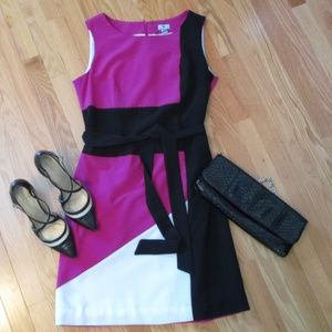 Ladies Color Blocked Sheath Dress